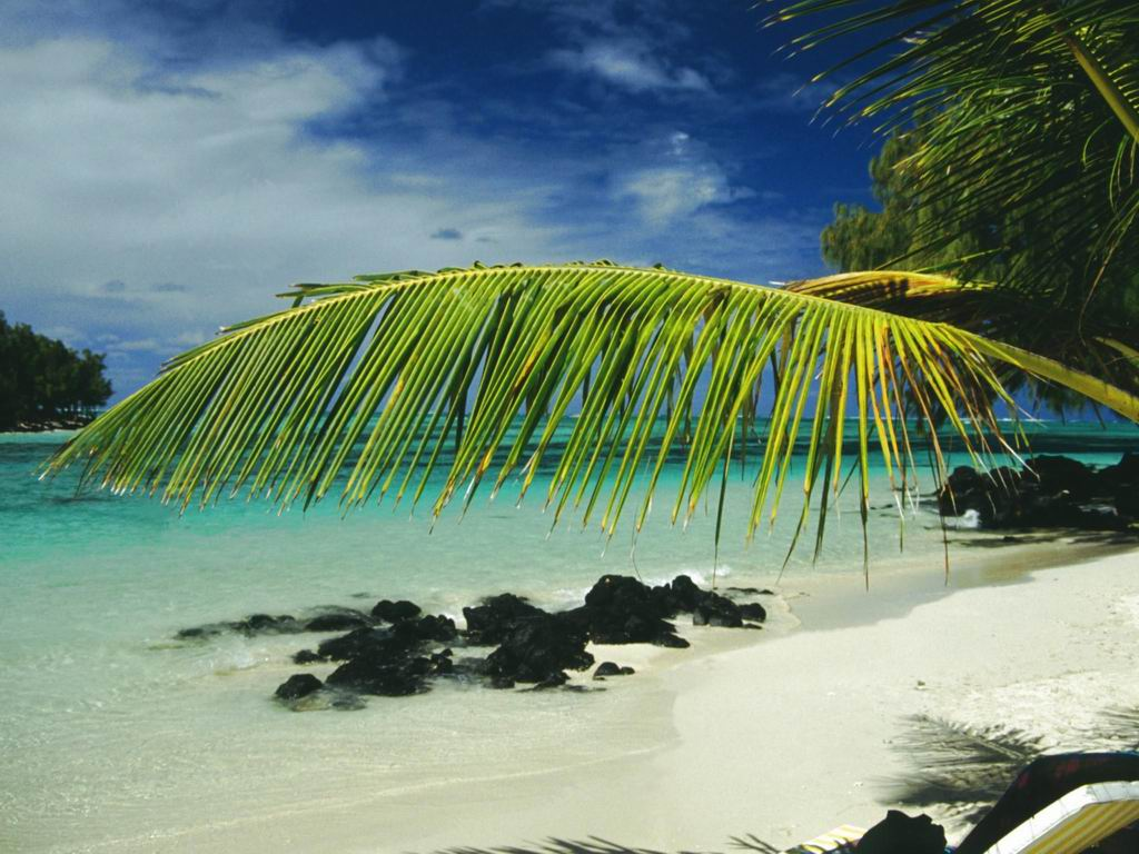 Informations pratiques sur le voyage à l'île Maurice