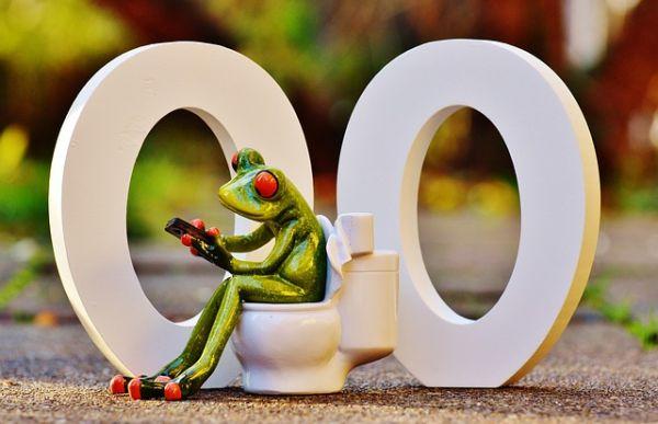 Des problèmes de toilettes bouchées ?