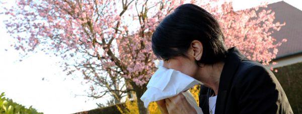 Alerte aux pollens dans toute la France !