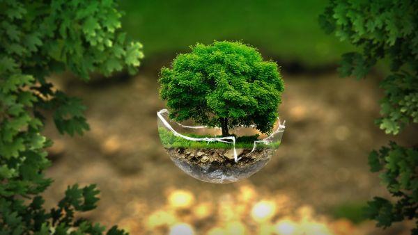 Secteur de l'environnement: quels sont les métiers qui recrutent?